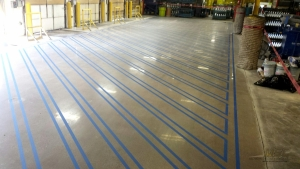Polished Concrete with Blue OSHA Line Striping