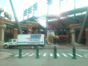 MSC-detroit-tigers-flooring