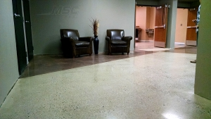 Exposed Aggregate, Two Color Overlay Polished Concrete at Woods Church - Warren, Michigan (2015)